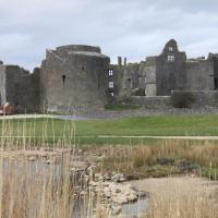ROSCOMMON 25.03.16 011 Château de Roscommon