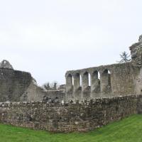 ROSCOMMON 26.03.16 016 Abbaye de Roscommon